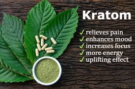 Kratom vs opiates